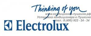 Установка кондиционера Electrolux в Пушкино, Продажа кондиционера Electrolux в Пушкино, тел.: 8 (495) 922-24-34