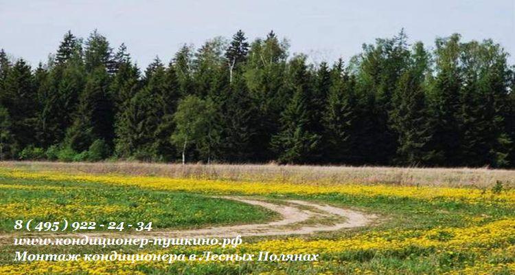 Установка кондиционера в Лесных Полянах 8(495)922-24-34 монтаж кондиционеров  Лесных Полянах купить кондиционер в Лесных Полянах